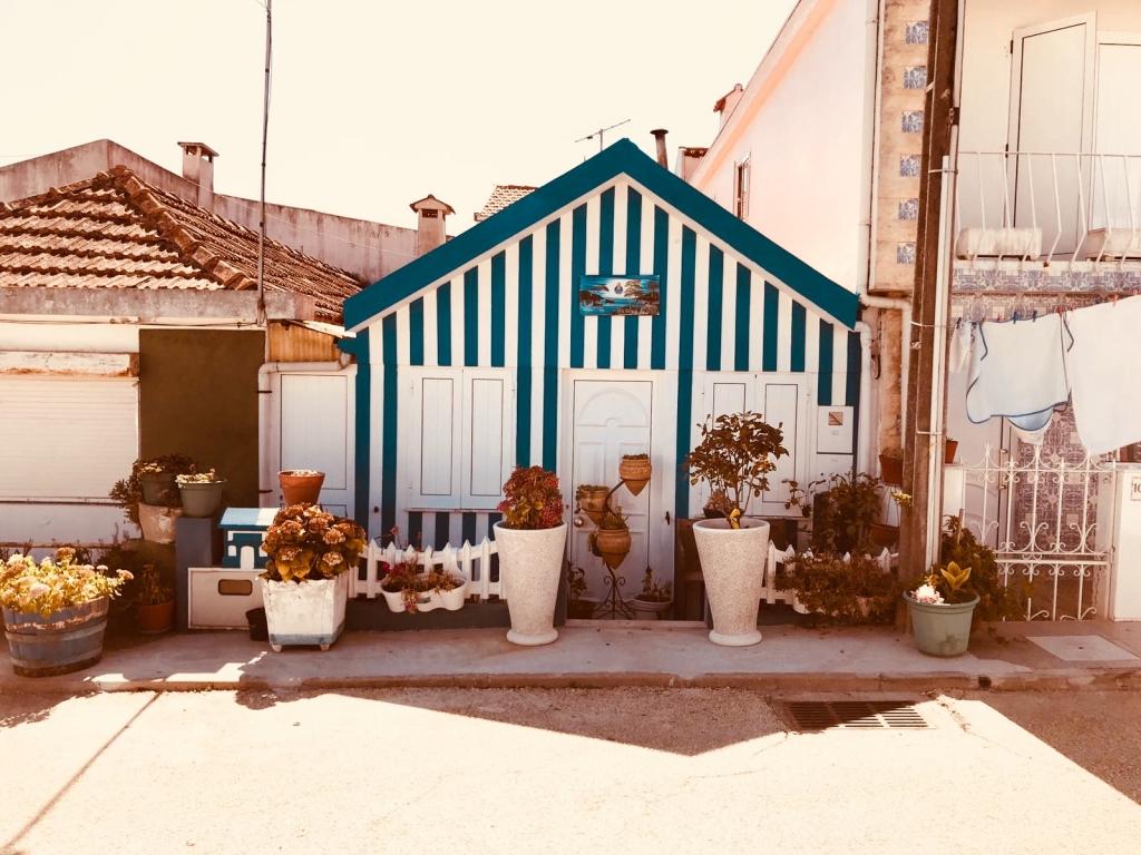 petite-maison-costa-nova